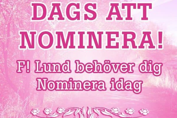 ★ Nominera till kommunfullmäktige för valet 2018! ★